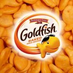 Four Types Of Goldfish Crackers Recalled After Salmonella Outbreak