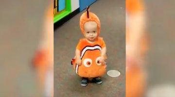 Toddler dresses like a clown fish, when he turns around, Dad can't help but bust out laughing